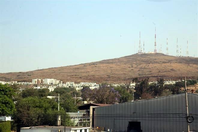 Pese a recomendaciones, va la UdeG por 55 hectáreas del cerro del Cuatro: NTR