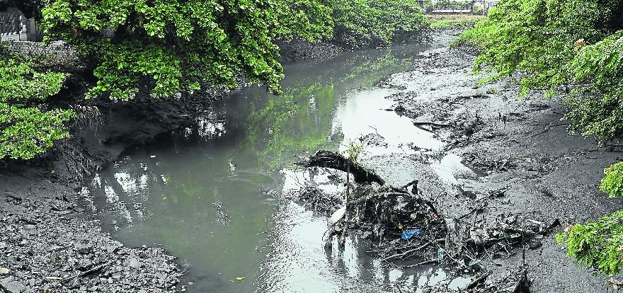 Persiste la emergencia por contaminación del estero El Salado, en Vallarta