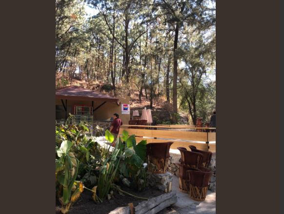 Denuncian apertura de cafetería en medio del bosque Los Colomos