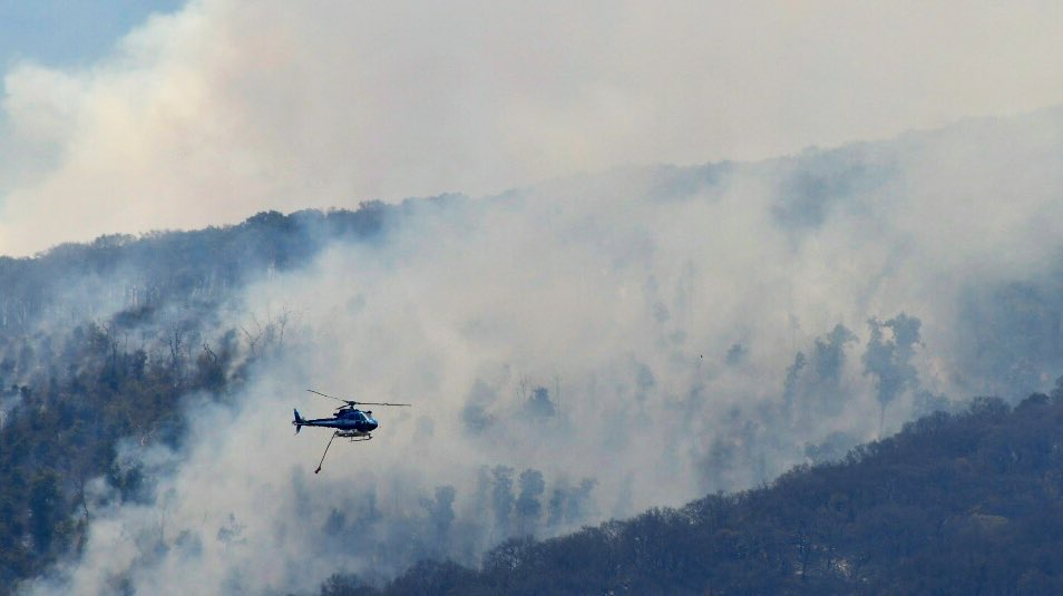 Prohibirán acceso a La Primavera por Mariano Otero para evitar incendios provocados