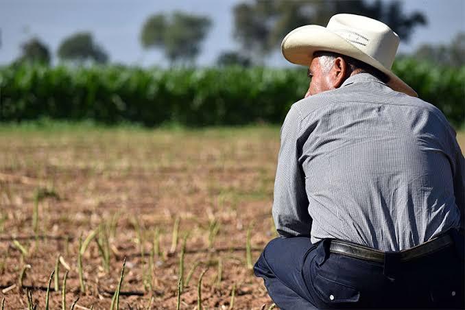 Pese a nulo crecimiento, México tiene buenas oportunidades: Ignacio Román Morales