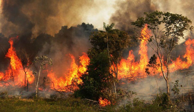 La Amazonia arde por dieciseisavo día consecutivo