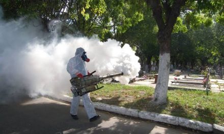 Dengue: ¿incapacidad o negligencia?