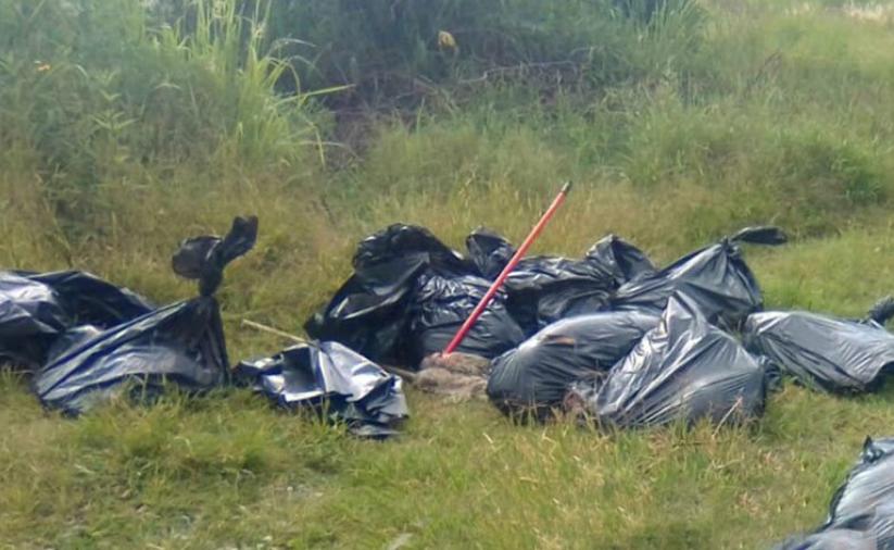 Localizan 17 bolsas con restos humanos, ahora en Tala