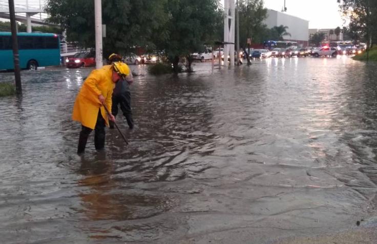 Lluvia en Guadalajara: al menos treinta árboles caídos e inundaciones