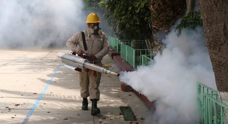 Tardía y caduca, fumigación contra el dengue