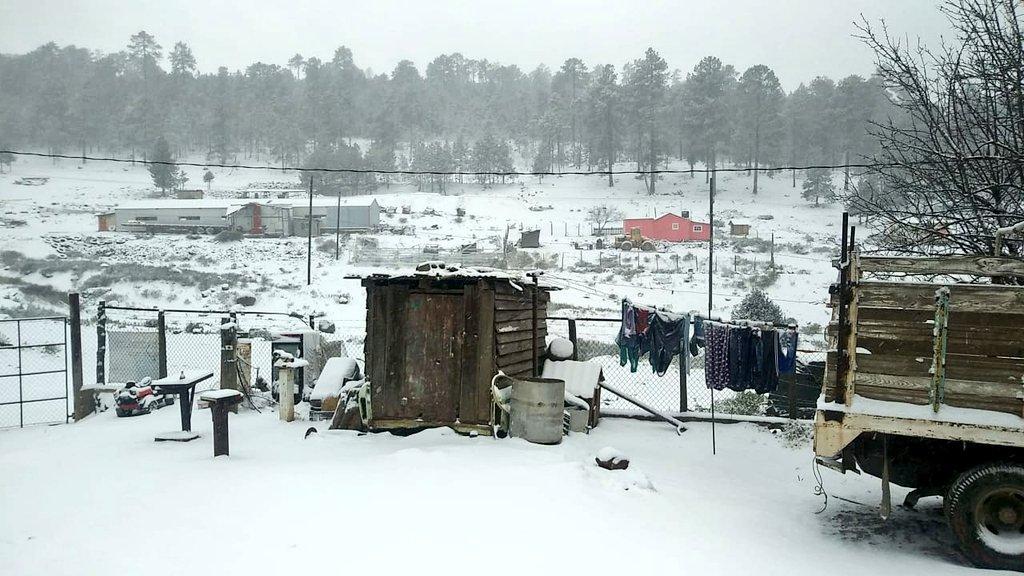 Nueve municipios de Durango se cubren de nieve