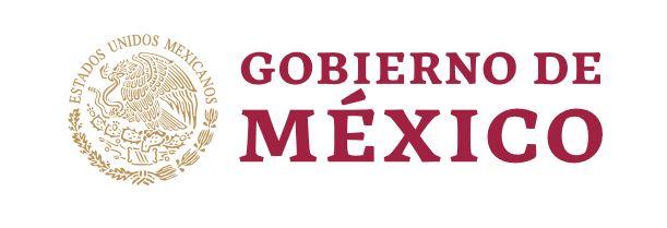Mexicanos varados por Covid-19 serán repatriados